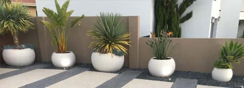 round planters and pots