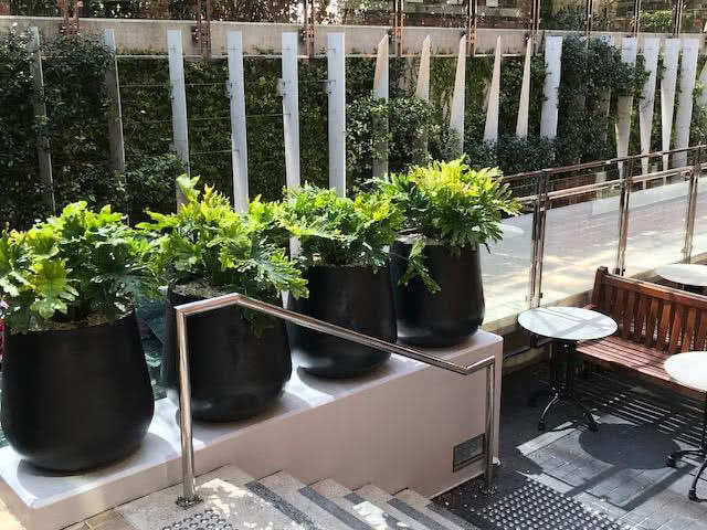 Commercial Planters – Brookfield